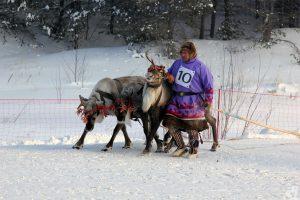 конкурс профессионального мастерства среди оленеводов Югры на кубок Губернатора