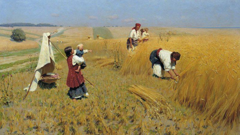 деревня, уборка хлеба, демография