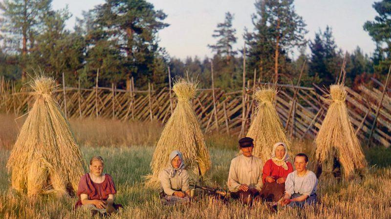 АПК, Николай Федоров, деревня
