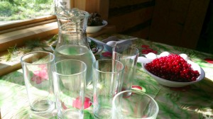 Местные ягоды и вкуснейший берёзовый сок.