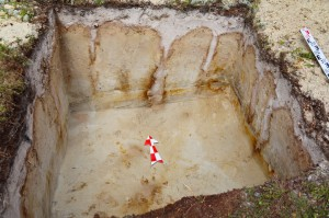 курганный могильник в Томской области