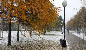 Бело-золотая осень Югры