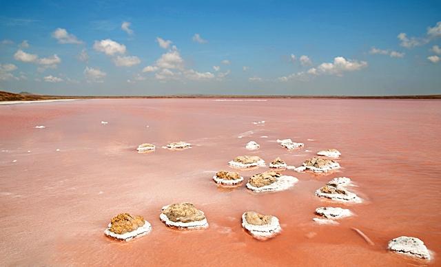 Розовая соль Крыма