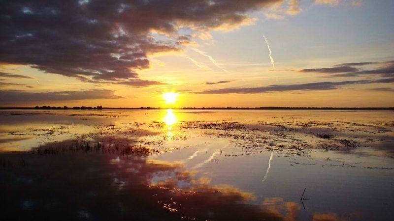 река, половодье, пейзаж, закат