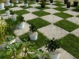 Каков расклад сил на шахматных полях планеты?