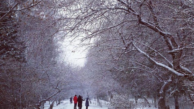 снежный день, Екатеринбург, снег, зима